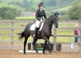 In-House Clinics at Caistor Equestrian Centre