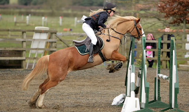 Show Jumping at Caistor Equestrian Centre