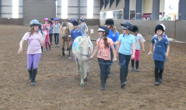 Summer Holiday Activities at Caistor Equestrian Centre