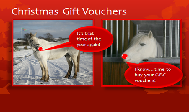 Christmas Gift Vouchers at Caistor Equestrian Centre